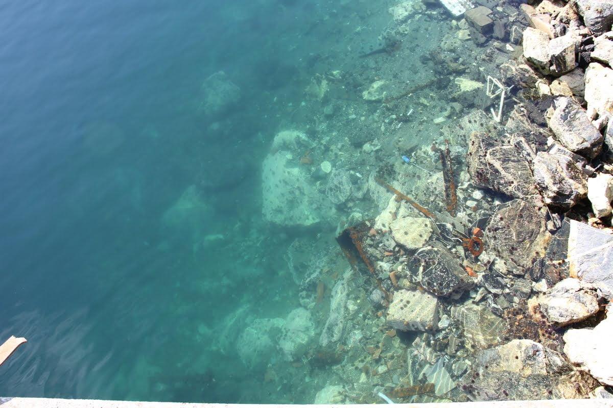 Il porto sepolto - Ungaretti